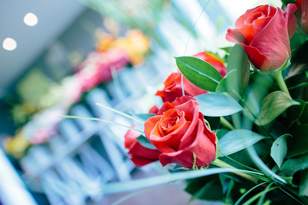 rose rouge comptoir