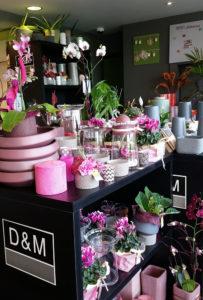 Fleuriste Gembloux. Bouquets et décorations