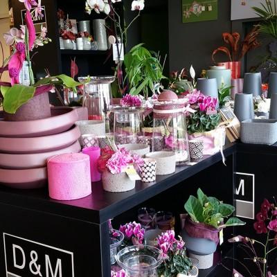 Décoration-rose magasin