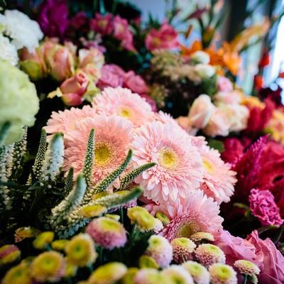 Fleurs rose fushia comptoir