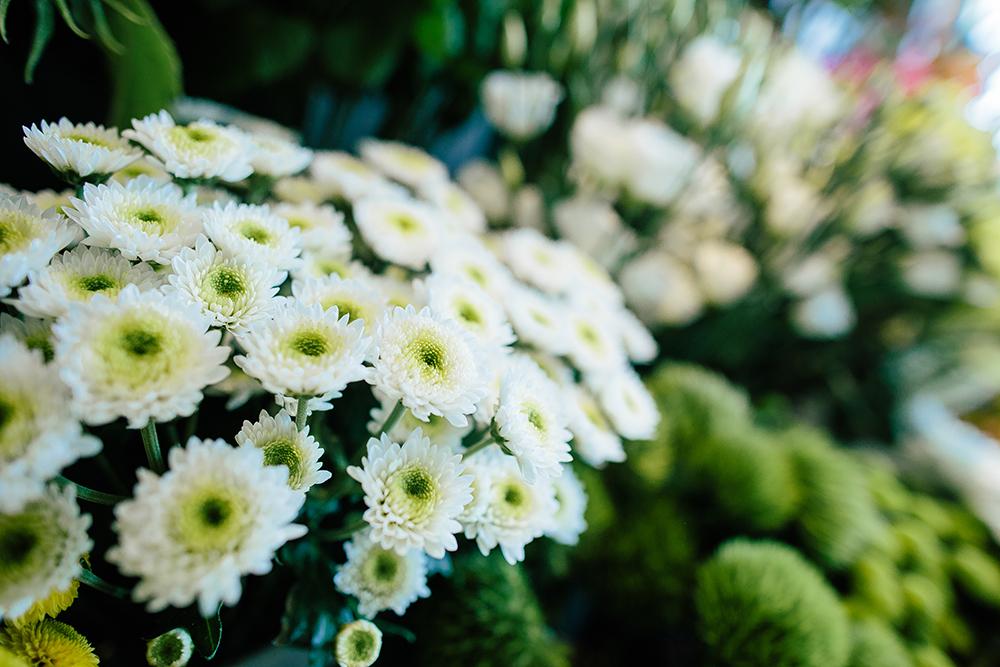 Fleurs blanche comptoir